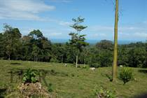 Lots and Land for Sale in Limón, Penshurt, Limón $3,000,000