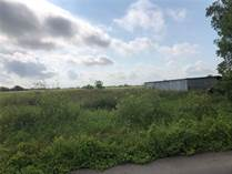 Farms and Acreages for Sale in Robstown, Texas $299,000