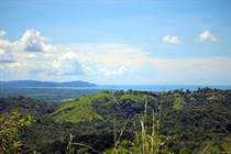 Farms and Acreages for Sale in Palmar Norte, Puntarenas $59,000