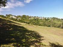 Lots and Land for Sale in Bo. Puntas, Rincon, Puerto Rico $895,000