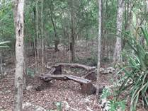 Lots and Land for Sale in SacBe, Playa del Carmen, Quintana Roo $295,000