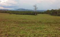 Lots and Land for Sale in San Ignacio, Cayo $20,000