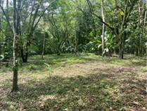 Lots and Land for Sale in Hatillo, Puntarenas $99,000