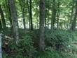 Lots and Land for Sale in Barren River Lake, Austin, Kentucky $55,000