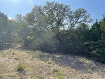 Lots and Land for Sale in Stallion Springs, Fischer, Texas $59,900