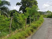 Lots and Land for Sale in Bo. Calvache, Rincon, Puerto Rico $70,000