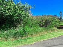 Lots and Land for Sale in Naalehu, Hawaii $100,000