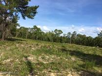 Homes for Sale in Big Tree Lakes, Keystone Heights, Florida $15,000