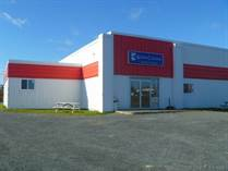 Commercial Real Estate for Sale in Carbonear, Newfoundland and Labrador $699,000