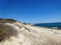 Lots and Land for Sale in Cardonal, Baja California Sur $3,750,000