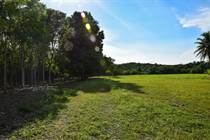 Farms and Acreages for Sale in Cayo, Belize $1,300,000