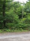 Lots and Land for Sale in Hekkla, Ontario $53,900