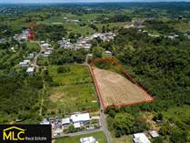 Farms and Acreages for Sale in Camuy Arriba, Camuy, Puerto Rico $105,000