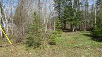 Lots and Land for Sale in Miller Lake West, Ontario $46,688