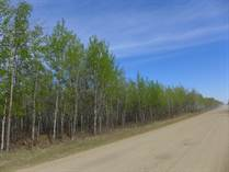 Lots and Land for Sale in Mulhurst, Wetaskiwin County, Alberta $1,525,000