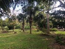 Lots and Land for Sale in Bonfil, Cancun, Quintana Roo $6,000,000
