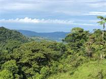 Farms and Acreages for Sale in Tinamastes, Puntarenas $158,000