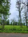 Lots and Land for Sale in Fort Erie, Ontario $399,900