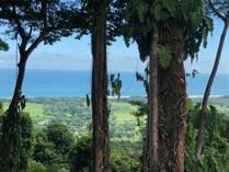 Lots and Land for Sale in Manuel Antonio, Puntarenas $299,000