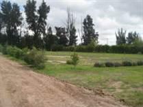 Homes for Sale in Carretera a Dolores, San Miguel de Allende, Guanajuato $45,000