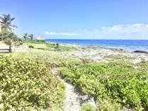 Lots and Land for Sale in Ocean Front, Puerto Aventuras, Quintana Roo $1,100,000