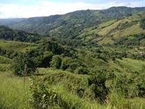 Farms and Acreages for Sale in San Isidro de El General, San José $299,000