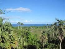 Lots and Land for Sale in Cabrera, Maria Trinidad Sanchez $225,000