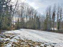 Lots and Land for Sale in Buck Lake, Alberta $110,000
