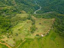 Farms and Acreages for Sale in Platanillo, Puntarenas $600,000