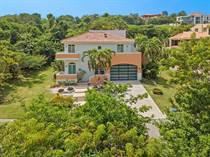 Homes for Sale in Palmas del Mar, HUMACAO, Puerto Rico $1,250,000