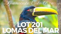 Lots and Land for Sale in Matapalo Beach , Guanacaste $159,000