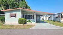 Homes Sold in Lakeland Junction, Lakeland, Florida $25,000