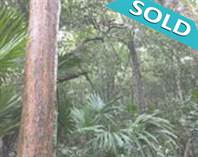 Lots and Land for Sale in Ruta de los Cenotes, Puerto Morelos, Quintana Roo $22,000