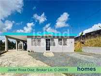 Homes for Sale in Cidra, Puerto Rico $115,000