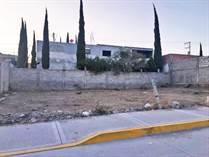 Homes for Sale in Ejido de Tirado, Guanajuato $36,500