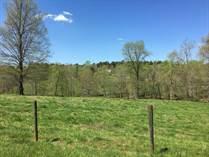 Homes for Sale in Dawsonville, Georgia $580,000