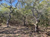 Lots and Land for Sale in Mystic Shores, Spring Branch, Texas $120,000