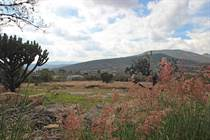 Homes for Sale in Camino a Jalpa, San Miguel de Allende, Guanajuato $75,000