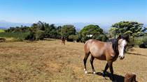 Lots and Land for Sale in Grecia, Alajuela $590,000