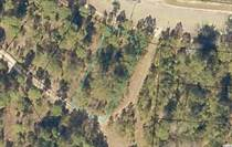Lots and Land for Sale in Georgetown, South Carolina $25,000
