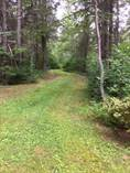 Other for Sale in Canaan Forks, Havelock, New Brunswick $32,000