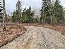Lots and Land for Sale in Dwight, Ontario $224,900