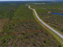 Lots and Land for Sale in Wewahitchka, Florida $15,000