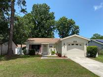 Homes for Sale in Countryside, Clearwater, Florida $244,500