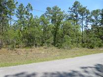 Lots and Land for Sale in WEEKI WACHEE, Florida $159,900