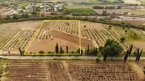 Lots and Land for Sale in Santisima Trinidad, San Miguel de Allende, Guanajuato $442,105