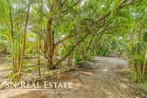 Homes for Sale in Playa Nosara, Guanacaste $119,000