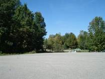 Lots and Land for Sale in Gladwin, Michigan $21,900