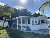 Homes for Sale in Three Lakes RV Resort, Hudson, Florida $38,700