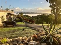 Homes for Sale in Hato Viejo, Ciales, Puerto Rico $1,499,000